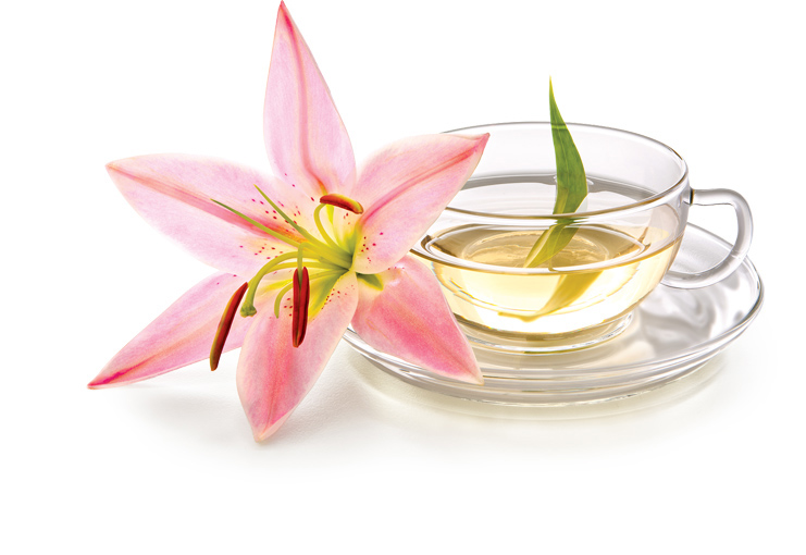 White Tea and Lily