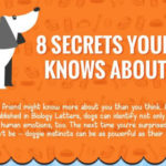Secrets your dog knows111