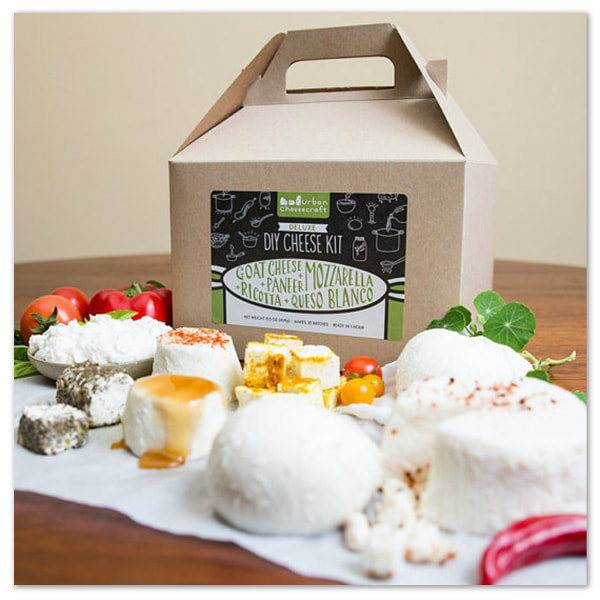 My Savvy Review of The Apollo Box ~ Deluxe DIY Cheese Kit ...